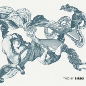 Copertina album thony - musica streaming birds
