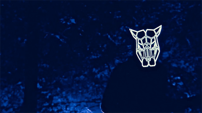 maschera musica rave boschi