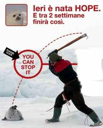 foto via lagondwanaland.com - Pro e contro di firmare con una label