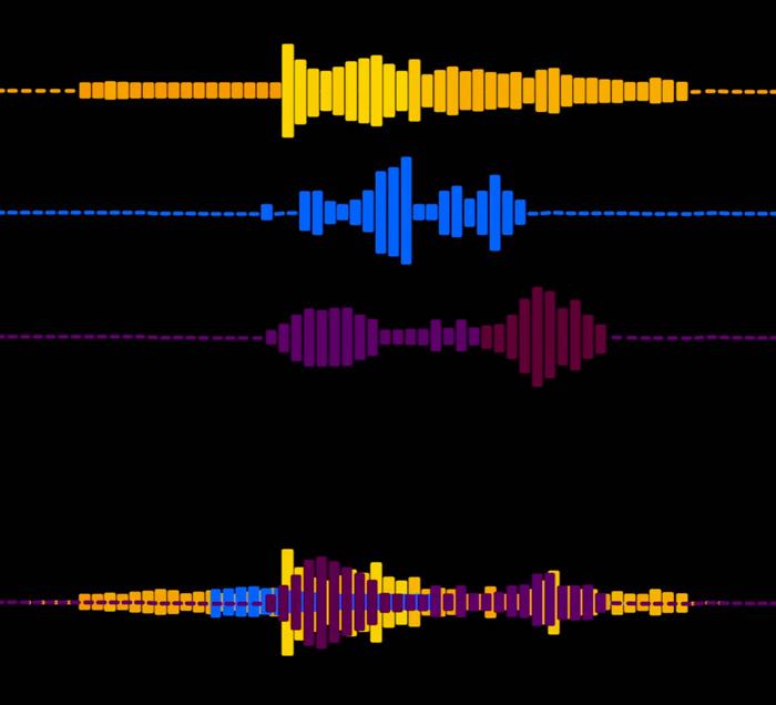 Come è fatto il cervello di un musicista?