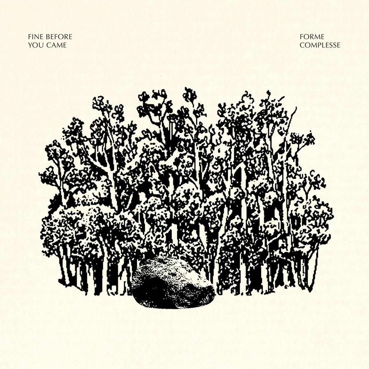 La copertina dell'album Forme Complesse