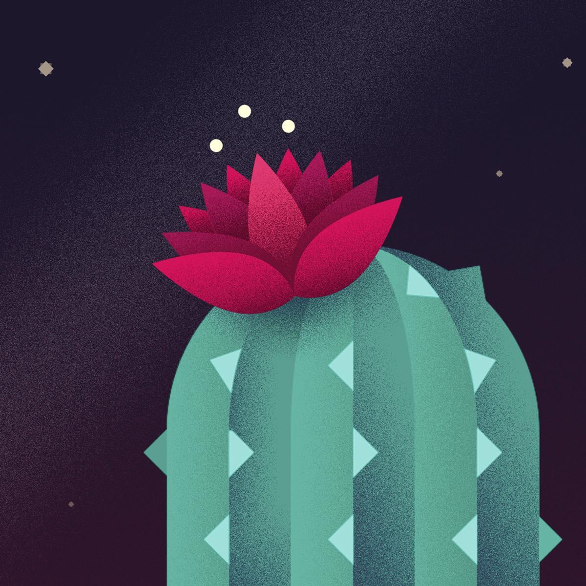 cactus-profilo.jpg