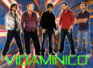 Vidaminico band