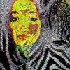 album Zebra - deNITTIS