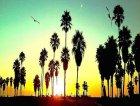 Venice-Beach-Sunset.jpg