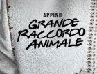 appino_banner.jpg