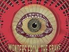 (AllMyFriendzAre)DEAD - Wonders from the grave frontcover.jpg