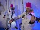 Gli archi della Ice Orchestra