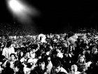 Il pubblico del concerto di Patti Smith allo Stadio Franchi, 1979