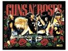 Guns 'n' Roses (dettaglio)