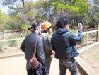 Gli Zen versione turisti e Ufo versione reduce dal Vietnam