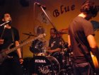 live@blue rose saloon