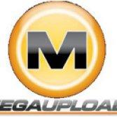 Google censura Megaupload e Torrent