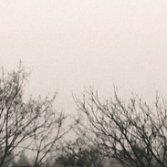 """Ascolta e scarica """"Le notti bianche"""", il nuovo album dei Bardamu"""
