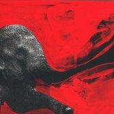 """C'mon Tigre """"Elephant RMX"""" (dettaglio copertina)"""