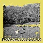 """Ascolta """"Paracetamolo"""" di Calcutta remixata da TY1"""