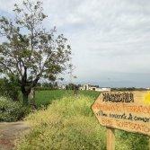 Scampia Music Fest cambia location e si sposta ad Afragola