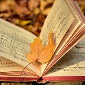 Ode a settembre, il mese più celebrato dalla nostra musica