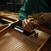Fazioli: storia dell'ingegnere che voleva costruire la musica