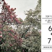 top 2011, Foto di Sha Ribeiro