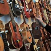 politica, Negozio di strumenti musicali