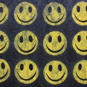 serie tv, Acid house smile