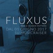 crowdfunding, fluxus1.jpg