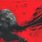 arte, C'mon Tigre Elephant RMX (dettaglio copertina)