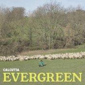 tracklist, La copertina di Evergreen di Calcutta