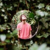 Con un disco per vivere tra gli alberi: Francesco Camin racconta Palindromi