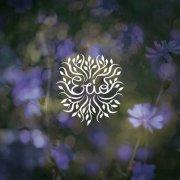 album The Reason / Torch Song - Erio