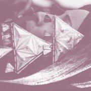 album Sleeping Beauty - persian pelican