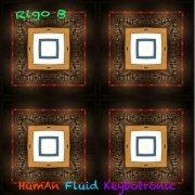 album Rigo B - HumAn Fluid Keybotronic - Rigo B