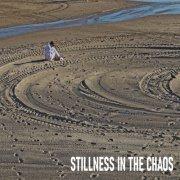 Stillness in the Chaos