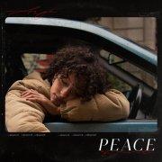 album Peace Of Mind Arya-soul