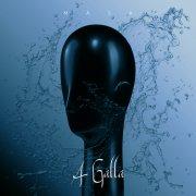 A Galla