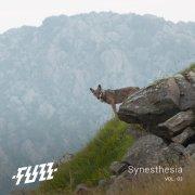 Synesthesia Vol.03