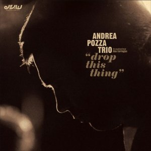album Drop this thing - Andrea Pozza Trio