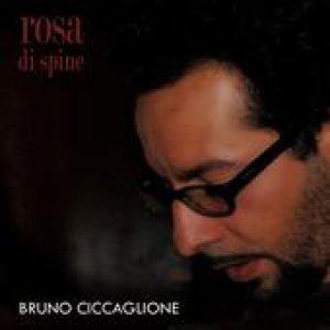 album Rosa di Spine - Bruno Ciccaglione