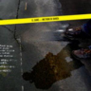 album Metodo di Danza (LTD-026/2009) - Uscita 12 giugno - Il Cane