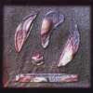 album Filoritimia - Filoritmia