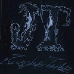 album The Jungle Tribe 2009 - THE JUNGLE TRIBE