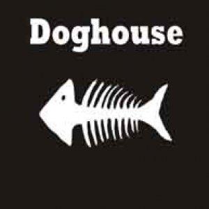 album Doghouse - Doghouse