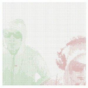 album Kumar Solarium - DYD