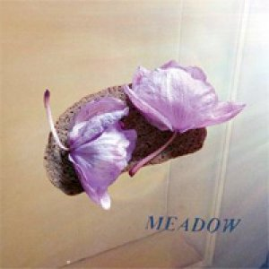 album Meadow Ep - Meadow