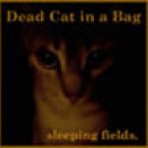 album Sleeping Fields - Dead Cat in A Bag