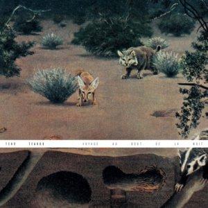 album Voyage au bout de la nuit - Teho Teardo