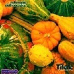 album Nutrimento elettroacustico - Tilak