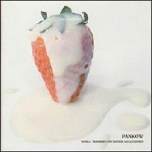 album Wodka, erdbeeren und weitere katastrophen - Pankow