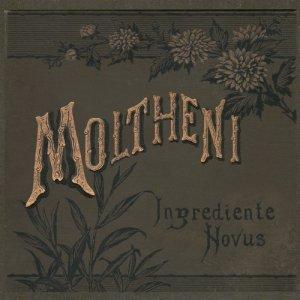 album Ingrediente Novus - Umberto Maria Giardini (ex Moltheni)